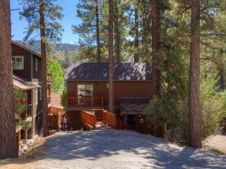 Four Seasons Retreat - Big Bear Area vacation rentals