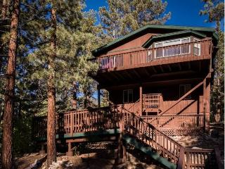 Treetop Retreat - Fawnskin vacation rentals