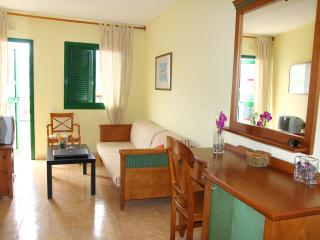 Nice Apartament in Playa delk Ingles 2 minutes to the beach - Playa del Ingles vacation rentals