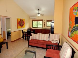 BEACH  AREA  CONDO  NEAR   DOWNTOWN  COCO - Playas del Coco vacation rentals