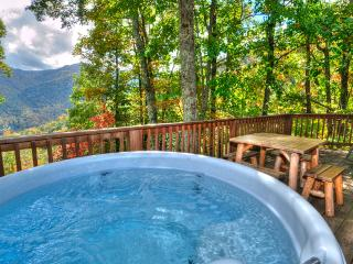 Cozy,Quaint,Private!Perfect for 2 or party of 6! - Maggie Valley vacation rentals