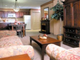 Pocono's Ski Resort Split Rock Lodge Newer Condo - Lake Harmony vacation rentals