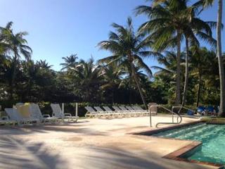 Rio Mar Resort Villa Berquiz,Golf, Tennis, Beach - Puerto Rico vacation rentals