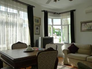 3 bdr Blue Mosque View apartment - Istanbul vacation rentals