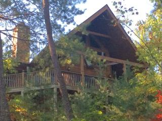 Beautiful, private mountain cabin just outside the Smoky Mtn National Park! - Wears Valley vacation rentals