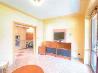 Hillside Apartment - Bedrichov vacation rentals