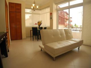 Apartment in best location of Old Town - Santo Domingo vacation rentals
