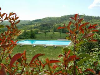 Vetus - Bucine vacation rentals