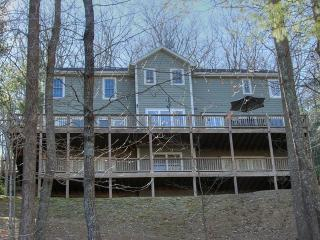 Affordable Mountain Luxury Home close to Biltmore - Asheville vacation rentals