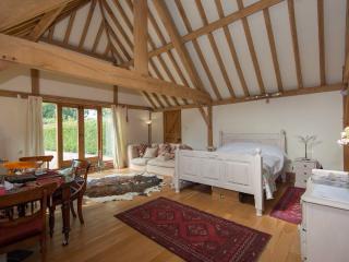 Orchard Barn - Fordingbridge vacation rentals