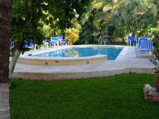 An oasis in the heart of San MIguel. - Cozumel vacation rentals