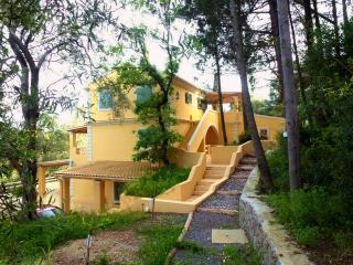 Luxury pool Villa-Ipsos Corfu-2 bedroom 2 bath res - Ipsos vacation rentals