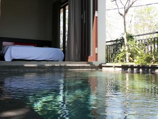 Tranquil 3beds villa - Jimbaran vacation rentals