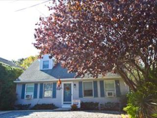 712 Lighthouse Avenue 120765 - Image 1 - Cape May Point - rentals
