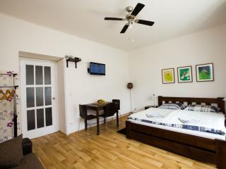 Cool apartment: 15mins from centre! - Bohemia vacation rentals