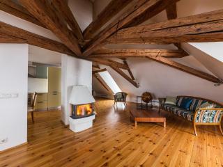 Toom-Rüütli 10 ap 4, 1BDRM - Tallinn vacation rentals