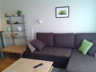 Tartu mnt 16b ap 17, 1BDRM - Tallinn vacation rentals
