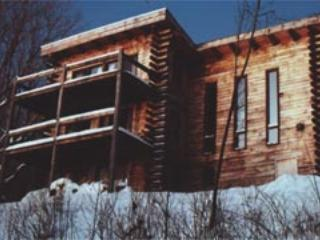 Vermont Log Home On 21 Acres Btwn Okemo/killington - Mount Holly vacation rentals