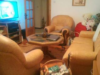 Central Cozy Room - Piatra Neamt vacation rentals
