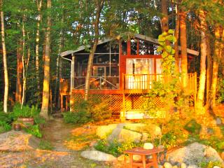 Cozy Island Cottage on Frye Island - Casco vacation rentals