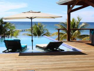 Private Beach - Infinity Pool - Incredible Views - Roatan vacation rentals
