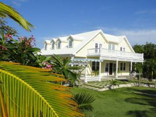 The Yellow House - North Palmetto Point vacation rentals
