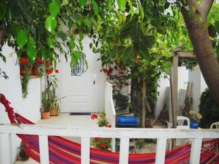 Incredible Sea View Home on  the Island of Crete ! - Agia Pelagia vacation rentals