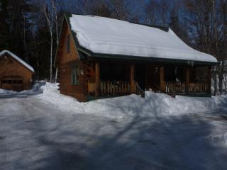 Greenville Log Cabin w/ Bunkhouse - Greenville vacation rentals