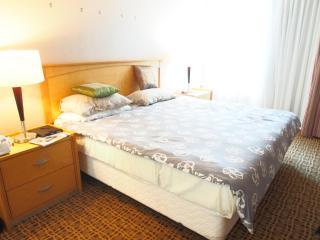Central downtown 2 bedroom condo - Vancouver Coast vacation rentals