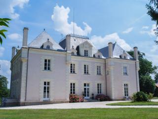 Romance and Elegance - Chateau du Breil - Saint-Andre-Treize-Voies vacation rentals