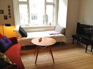 Cozy Copenhagen apartment in popular area near Enghave - Copenhagen vacation rentals