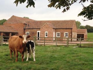 Bainvalley Bach - Hemingby vacation rentals