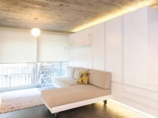 central Location,New Flat Taksim downtown istanbul - Istanbul vacation rentals