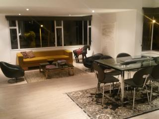 Designer Apartment Chicó - Bogota vacation rentals