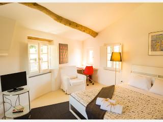 Charming Studio at Le Mura in Lucca - Lucca vacation rentals