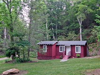 Gray Cove Cottage - Franklin vacation rentals