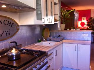 appartement - Annecy vacation rentals