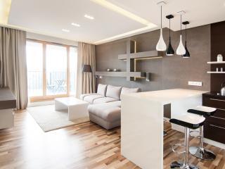 Top Floor Luxury Apartment - Krakow vacation rentals