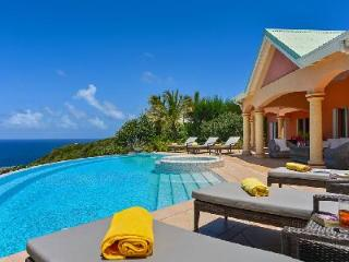 Sea Bird villa on exclusive estate with sunny terraces, large pool and Jacuzzis - Mont Jean vacation rentals