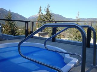 Ski-in/out, walk 2 village, free parking, hot tub. - British Columbia Mountains vacation rentals