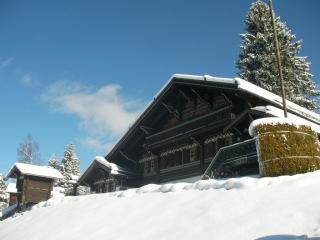 Ski Chalet in Villars Switzerland. Ski-in ski-out! - Villars-Sainte-Croix vacation rentals