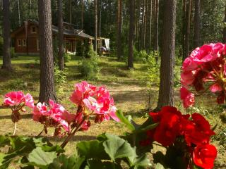 Luxury holiday home at Taipalsaari, East Finland - Kuopio vacation rentals