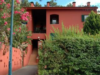 Pine Red Apartment - Verdizela vacation rentals