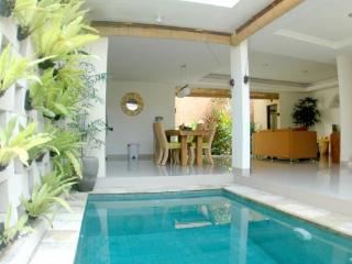 Nicole Villa 2 bedroom villa - Seminyak vacation rentals