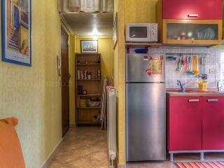 Near Rome studio flat for 2/3 - Torvaianica vacation rentals