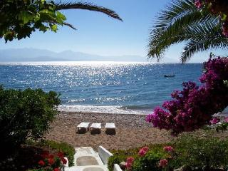 Messenia Peloponesse Beach Front Villas- Sleep 4/5 - Chrani vacation rentals