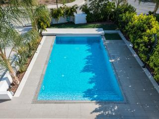 Sea Front Villa, Governors Beach, Limassol - Limassol vacation rentals