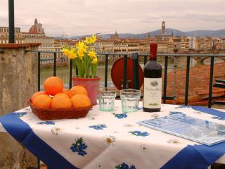 Florence centre, Terrace, WIFi (Soderini) - Rome vacation rentals