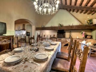Villa Palaia - Palaia vacation rentals