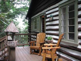 Asheville's Perfect Location-Smoky Mountain Easy - Asheville vacation rentals